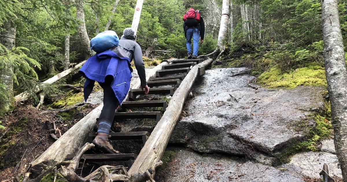 hikers climbing a ladder