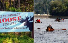 split image with sign for Moose Festival on the left and paddlers on the right