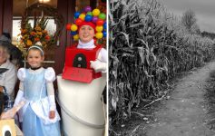 split image of kids in Halloween costumes and a black and white photo of a corn maze