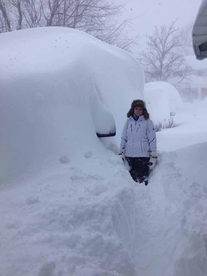 snow piled on cars